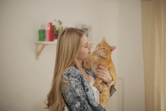フランス人は猫が好き?世界の犬派・猫派の人気を調べてみた。