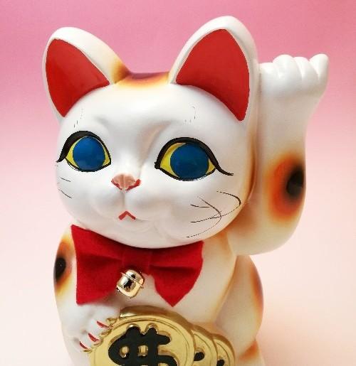 招き猫はアメリカだと手が逆になる!?知っておきたい招き猫の豆知識