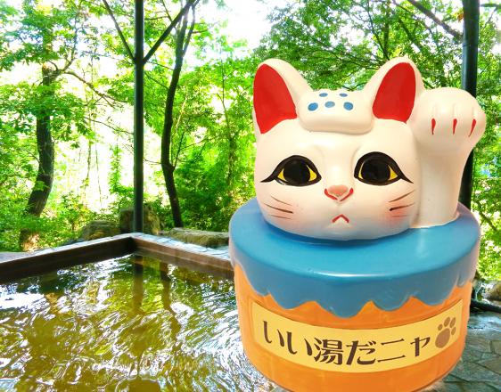 4月26日はよい風呂の日!お風呂をキレイにして運気も上げよう♪